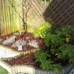 Decoration de jardin avec copeaux