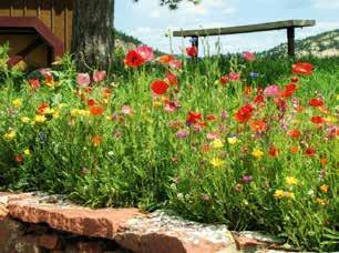 Décoration rouge de jardin