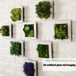 Décoration murale plantes