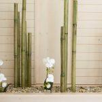 Decoration bambou jardin
