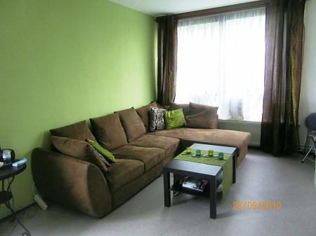 Decoration salon marron et vert - Design en image