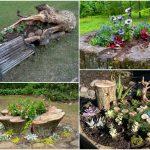 Decoration arbre mort dans jardin