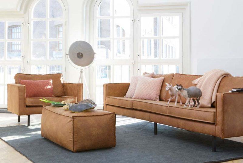 Décoration salon avec divan brun