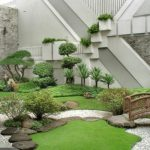 Plantes decoration jardin