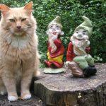 Decoration de jardin chat