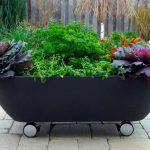Decoration de jardin avec pot