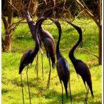 Oiseaux pour décoration jardin
