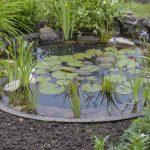Decoration de bassin de jardin