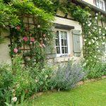 Decoration jardin anglais
