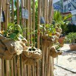 Decoration de jardin avec du bambou