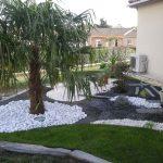 Décoration palmier jardin