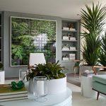 Décoration plante intérieur