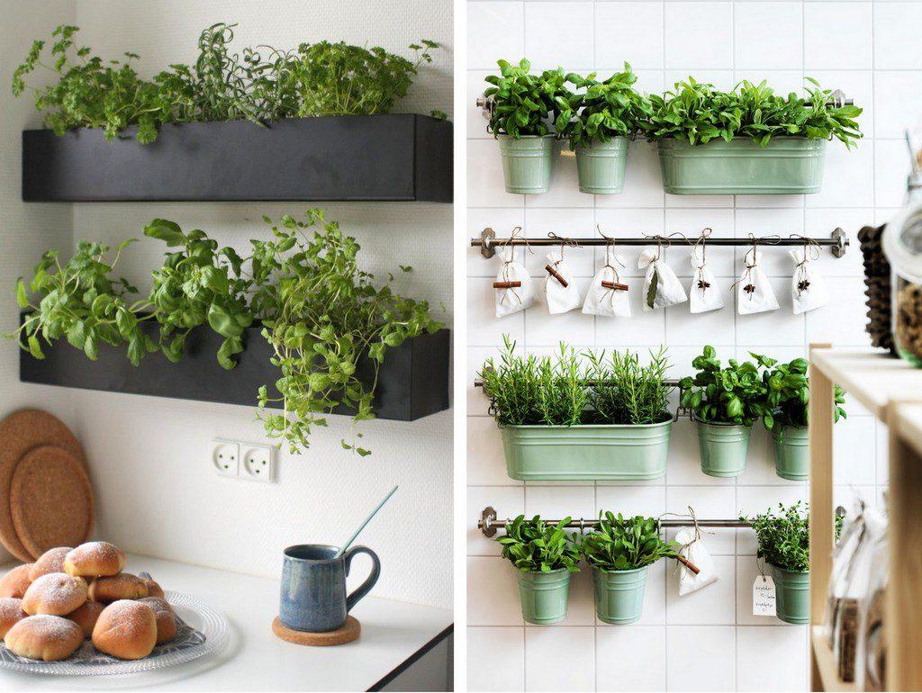 Décoration murale plante