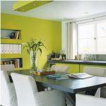 Décoration salon gris et vert anis
