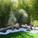 Decoration de jardin exotique