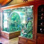 Decoration design aquarium