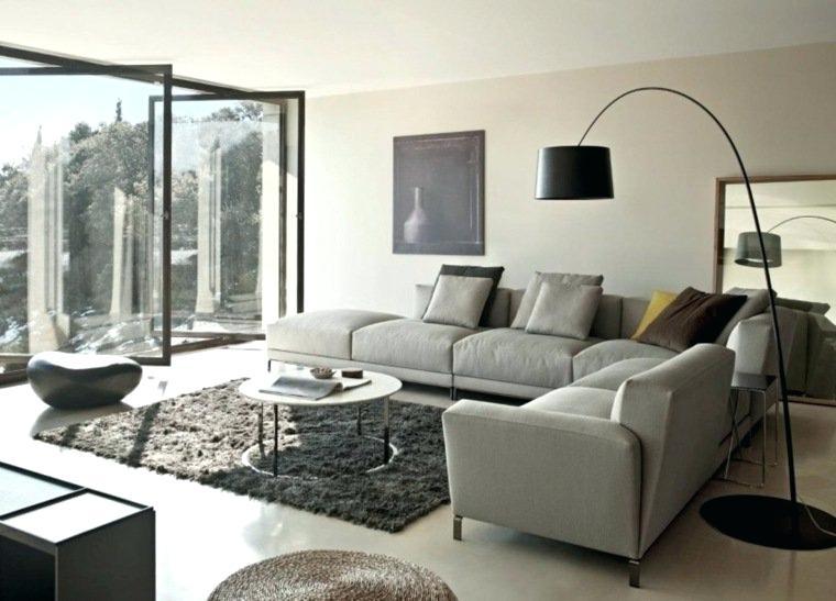 Decoration Salon Canape Gris Design En Image
