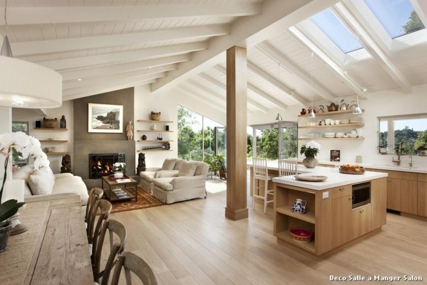 Exemple De Decoration Salon Salle A Manger Design En Image