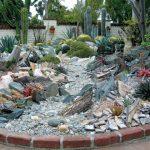 Decoration jardin cactus