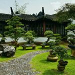 Decoration jardin feng shui