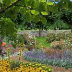 Décoration jardin de campagne
