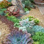 Modele de decoration jardin