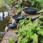 Decoration bassin de jardin