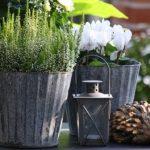 Decoration jardin zinc