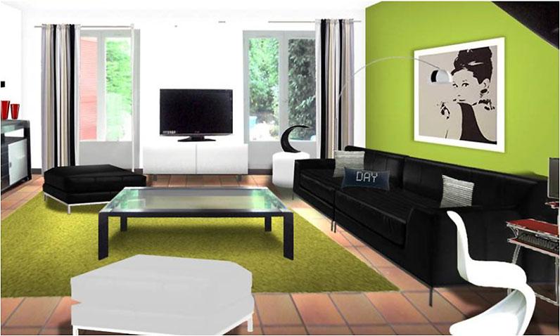 Décoration salon noir et vert - Design en image