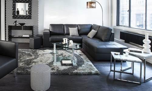 Merveilleux Decoration Interieur Salon Tendance