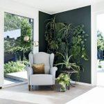 Decoration vegetale design