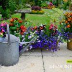 Decoration jardin fleurie