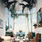Decoration tropical maison