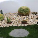 Decoration feng shui jardin