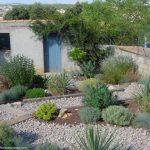 Décoration jardin sec