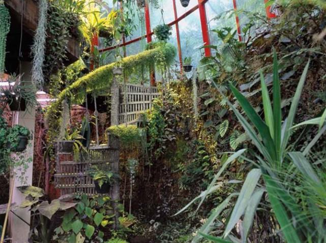 Décoration de jardin tropical