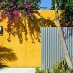 Decoration mur fond de jardin