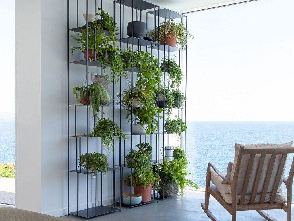 Décoration végétale jardin
