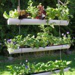 Décoration jardin pic