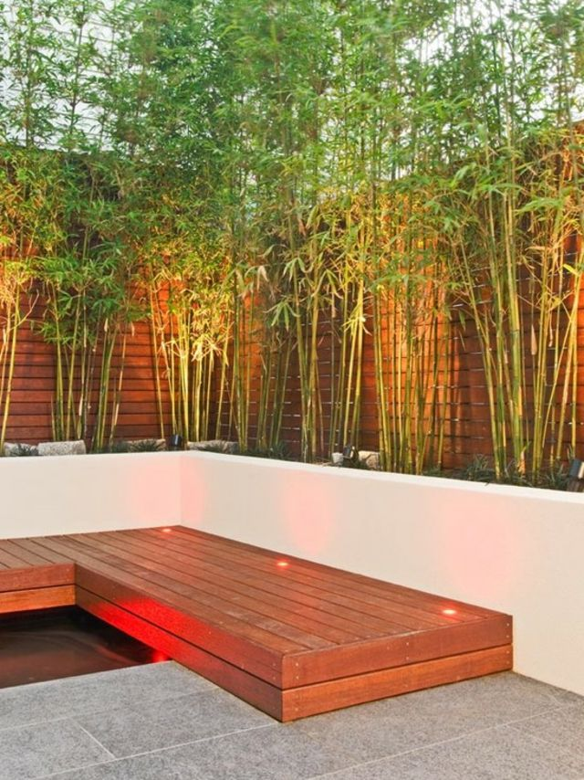 Decoration jardin avec bambous