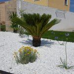 Decoration jardin nimes