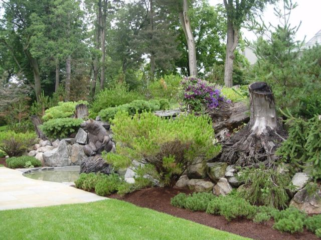 Décoration d'un jardin exotique