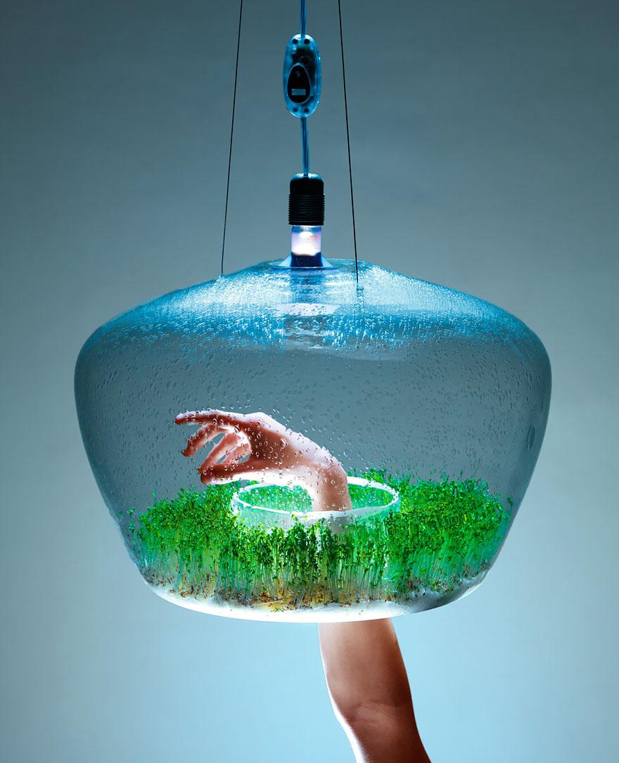 Design lampe nature